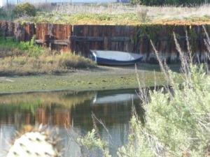 vencie-boat