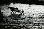 flood-989081_960_720