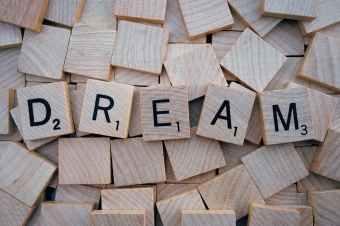 Photo by Pixabay on Pexels.com